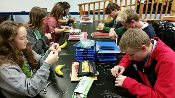Vet Tech students practicing their suturing skills.